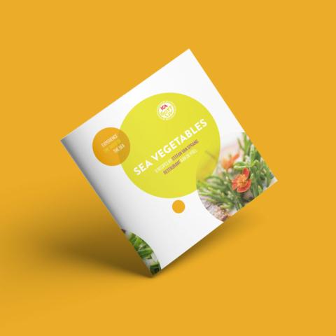 brochure ica supermarket receptengerechten boek 10801