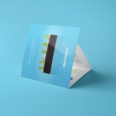 ontwerp bvb impress brochure substrates 10801