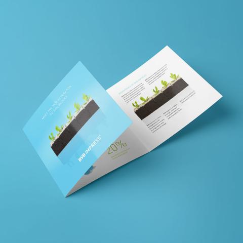 ontwerp bvb impress brochure substrates 10802