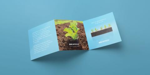 ontwerp bvb impress brochure substrates 19201080