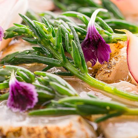 Foodfotografie Recepten Zeegroenten Ica Supermarket